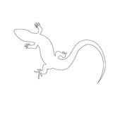 Lagarto monocromático hermoso, silueta del lagarto stock de ilustración