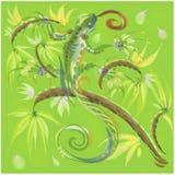Lagarto verde imagen de archivo