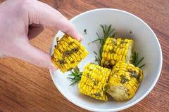 Lagat mat i ugnshavren med örter på en träbakgrund i den vita bunken som lagar mat havremajskolvar vid kockhanden, bästa sikt royaltyfria foton