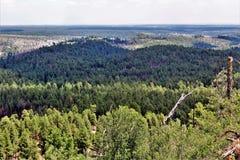 Lage adelvooruitzichten, het Nationale Bos van Apache Sitgreaves, Arizona, Verenigde Staten Stock Foto's