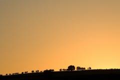 Lage horizon met bomen op heuvel Royalty-vrije Stock Afbeeldingen