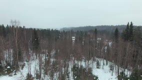 Lage vlucht over een snow-covered open plek met struiken en sparren in bewolkte dag stock videobeelden