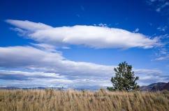 Lagen van pluizige witte wolk in een heldere blauwe hemel Royalty-vrije Stock Fotografie