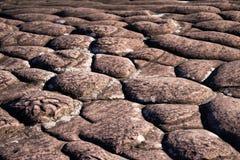 Lagen van sedimentair zandsteen stock fotografie