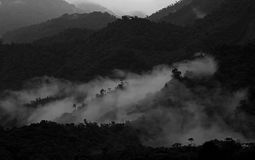 Lager av mest cloudforest berg i Ecuador, på nedgången till amazonasna handfat, suddighetsbild Arkivbild