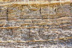 Lager av sedimentär sandsten vaggar Royaltyfri Fotografi
