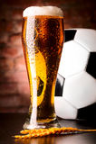 Lager with ball Stock Photography