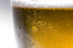 Lager beer. Close up of Cool lager beer Stock Image