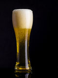 Lager beer on black background Royalty Free Stock Photo