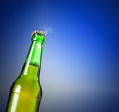 Lager beer in bottle Stock Photos