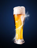 Lager beer in goblet Stock Photography