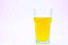 Lager beer Stock Image