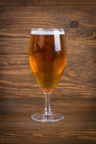 Lager-Bier im Glas Lizenzfreie Stockfotos