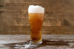 Lager-Bier mit weißem Schaum lizenzfreies stockfoto