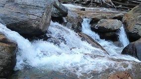 Lager deel van Whitewater-Dalingen van Zuid-Carolina stock video