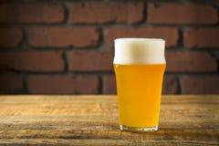 Lager dorata di rinfresco della birra immagine stock libera da diritti