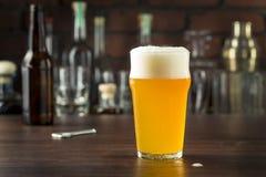 Lager dorata di rinfresco della birra immagini stock libere da diritti