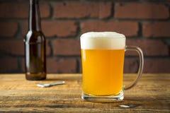 Lager dorata di rinfresco della birra fotografia stock libera da diritti