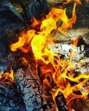 Lager-Feuer stockfotos