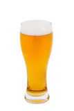 Lager piwo w szkle Zdjęcia Stock