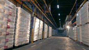 Lager stort modernt lager i en fabrik stock video