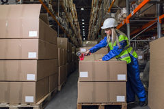 Lagerarbeitskraft-Verpackungskästen im Lagerhaus Stockfotografie