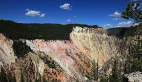 Lagere Dalingen, het Nationale Park van Yellowstone Stock Afbeelding