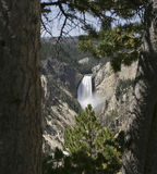 Lagere Dalingen Yellowstone Stock Foto