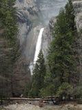 Lagere Dalingen Yosemite Royalty-vrije Stock Foto