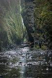Lagere die Oneonta valt waterval in Westelijke Kloof, Oregon wordt gevestigd Stock Foto