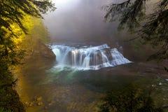 Lagere Lewis Fall Foggy Morning Washington-Staat de V.S. stock afbeeldingen