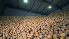 Lagereinheit gefüllt mit vielen Kartoffeln r stock video footage