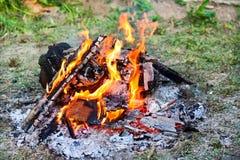 Lagerfeuer in der Natur Lizenzfreie Stockbilder