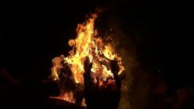 Lagerfeuer in der Zeitlupe stock video footage