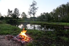 Lagerfeuer durch Wald Stockfotos