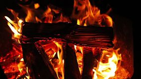 Lagerfeuer flammt Nahaufnahme stock video footage