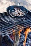 Lagerfeuer-Kochen Lizenzfreie Stockbilder
