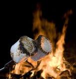Lagerfeuerfestlichkeitskochen lizenzfreies stockfoto