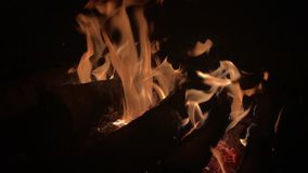 Lagerfeuerlagerfeuer-Sommernachtbrennendes Feuer/-lagerfeuer stock video footage