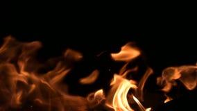 Lagerfeuernahaufnahme von Flammen des Feuers auf einem schwarzen Hintergrund in der kompletten Dunkelheit Natürliche Wärme des Ko stock video footage