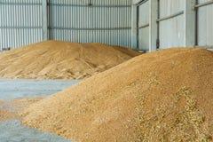 Lagerstapel von Weizenkörnern stockfotografie