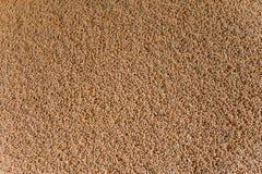 Lagerung, Verarbeitung von Kornbohnen Stockfotos