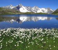 Laghi 5, alpi europee Fenetre Fotografia Stock