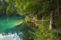 Laghi di fusine/laghi Fusine/jezera di Belopeska, Italia Fotografie Stock