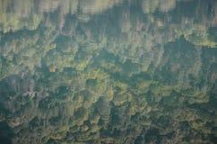 Laghi Monticchio sull'avvoltoio Basilicata, Italia del supporto Fotografia Stock Libera da Diritti