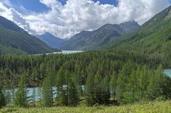 Laghi mountain Montagne di Altai, Russia Giorno di estate pieno di sole Fotografie Stock Libere da Diritti