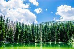 Laghi park di Durmitor nel Montenegro Immagine Stock