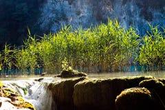 Laghi Plitvice Fotografia Stock