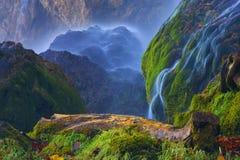 Laghi Plitvice della Croazia (Hrvatska) - parco nazionale di estate Fotografia Stock