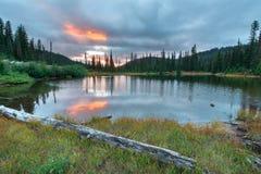 Laghi reflection in supporto Rainier National Park fotografia stock